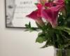 Simply Dermatology Dix Hills Dermatologist Flowers